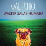 Walter Salas-Humara's Walterio Has Winning Songs